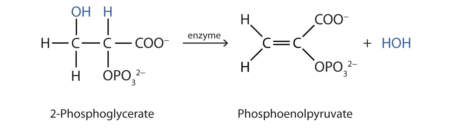 The dehydration reaction between two alcohol molecules produces the corresponding ether.
