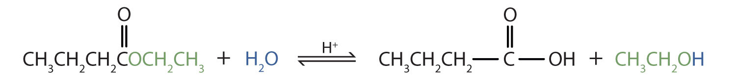 The hydrolyzation of ester Ethyl propanoate produces the corresponding propanoic acid and Ethanol alcohol.