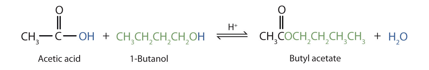 The reaction between Acetic acid and 1-butanol produces Butyl acetate and water.