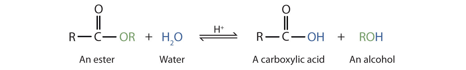 The hydrolyzation of ester produces the corresponding acid and alcohol.