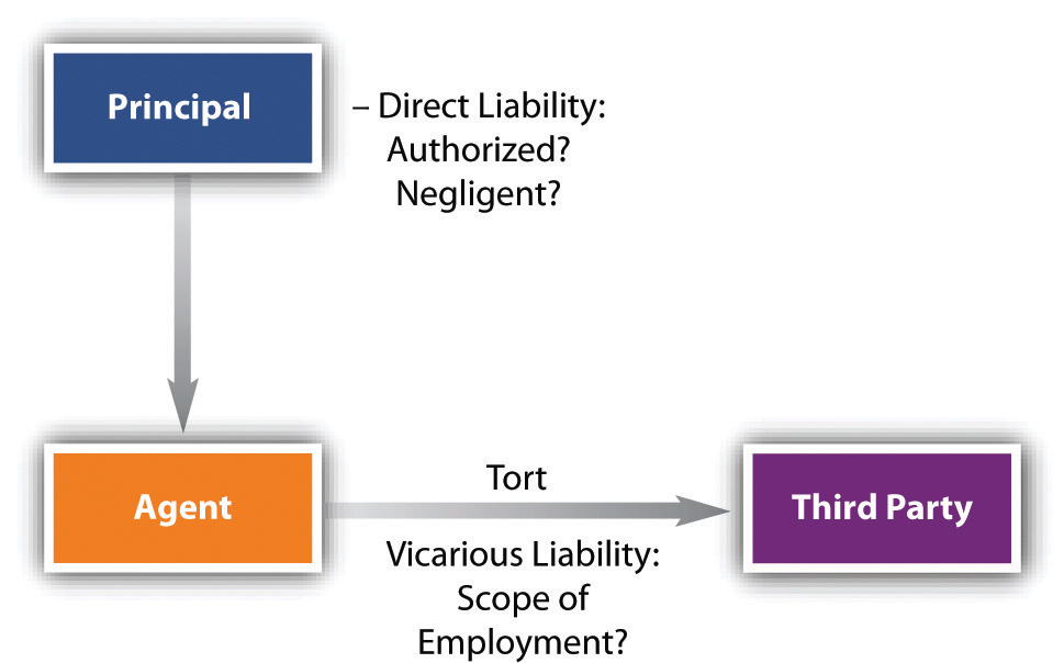 Liability of principal and agent termination of agency vicarious liability spiritdancerdesigns Gallery