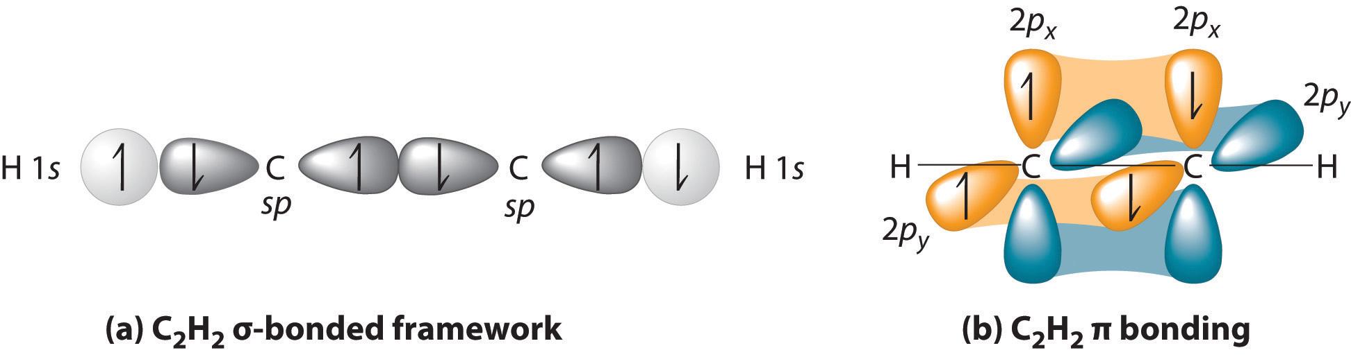 carbon carbon multiple bond Features of carbon  ability to form multiple bonds: carbon atom can form single,  double bond with oxygen, and triple bond with nitrogen.