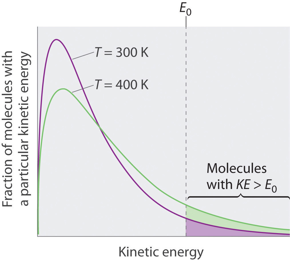 Just As With Gases, Increasing The Temperature Shifts The Peak To A Higher  Energy And Broadens The Curve Only Molecules With A Kinetic Energy Greater  Than