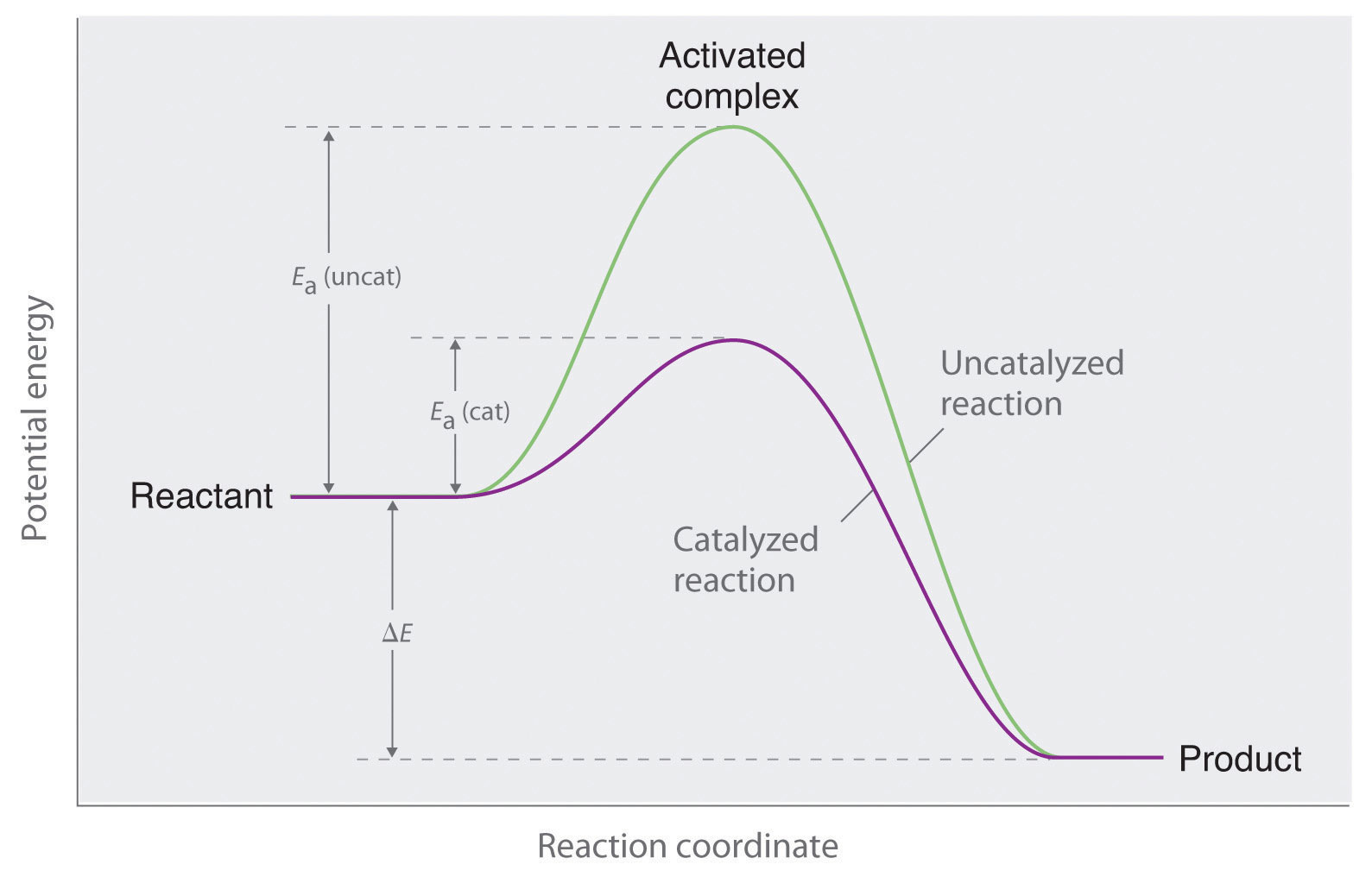 rate constant activation energy catalyst