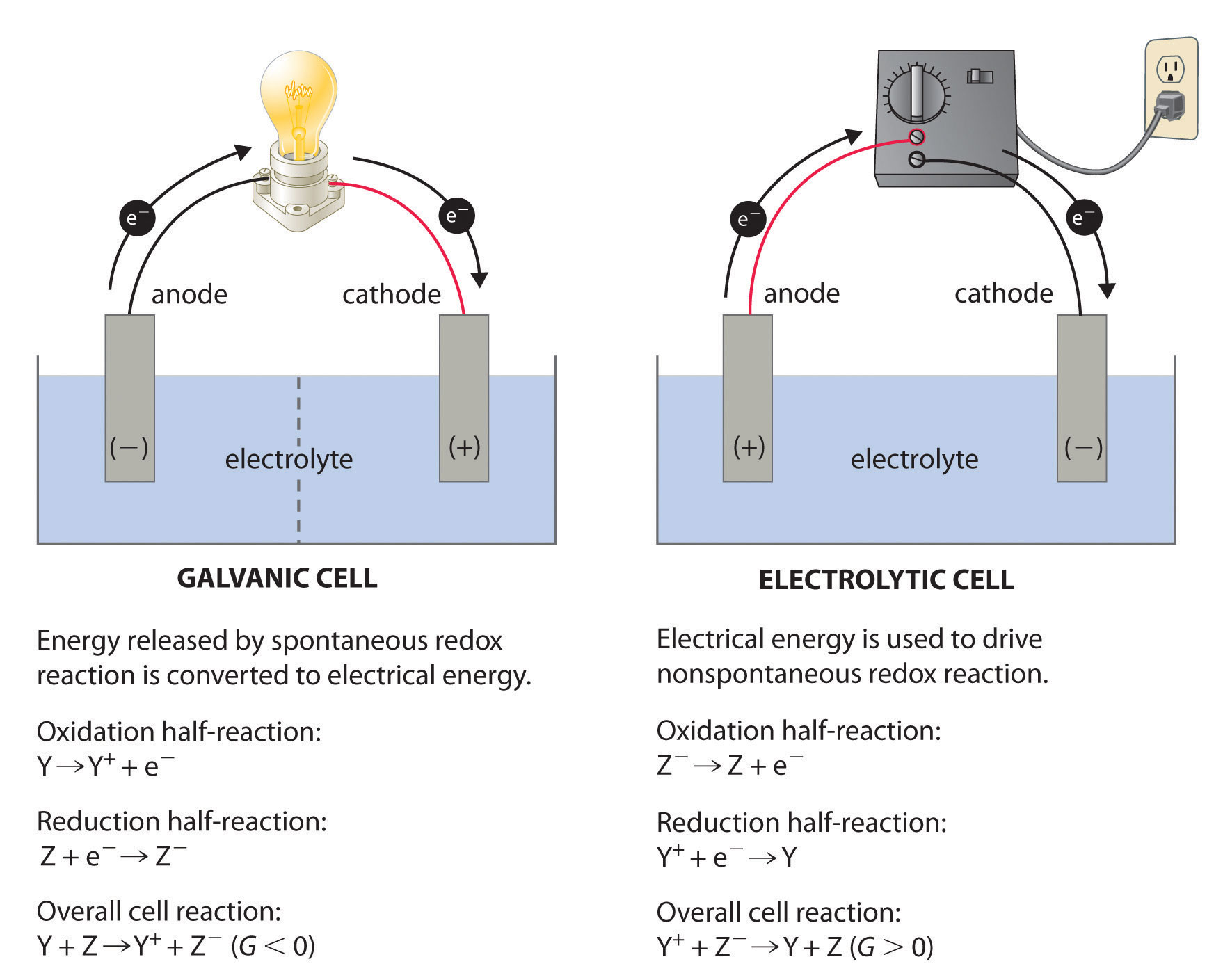 Describing electrochemical cells a galvanic cell left transforms the energy released by a spontaneous redox reaction into electrical energy that can be used to perform work ccuart Gallery