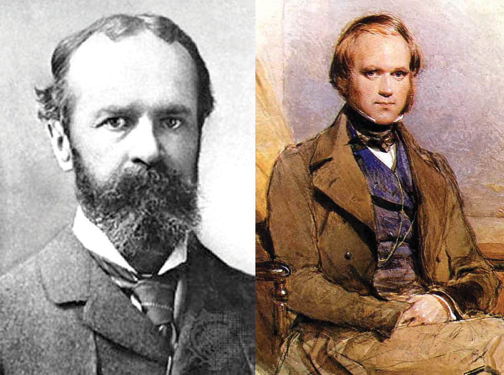 """charles darwin s work has influenced evolutionary psychology Other observations that influenced his evolutionary psychology and evolutionary ethics help adapted from the article """"charles darwin's paradigm."""