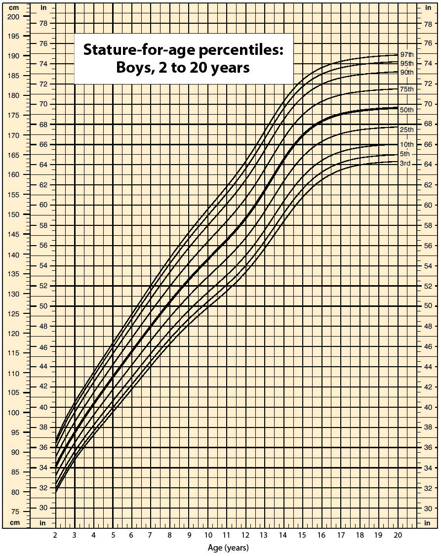 Growth chart showing stature percentiles for 2 to 20 year old boys