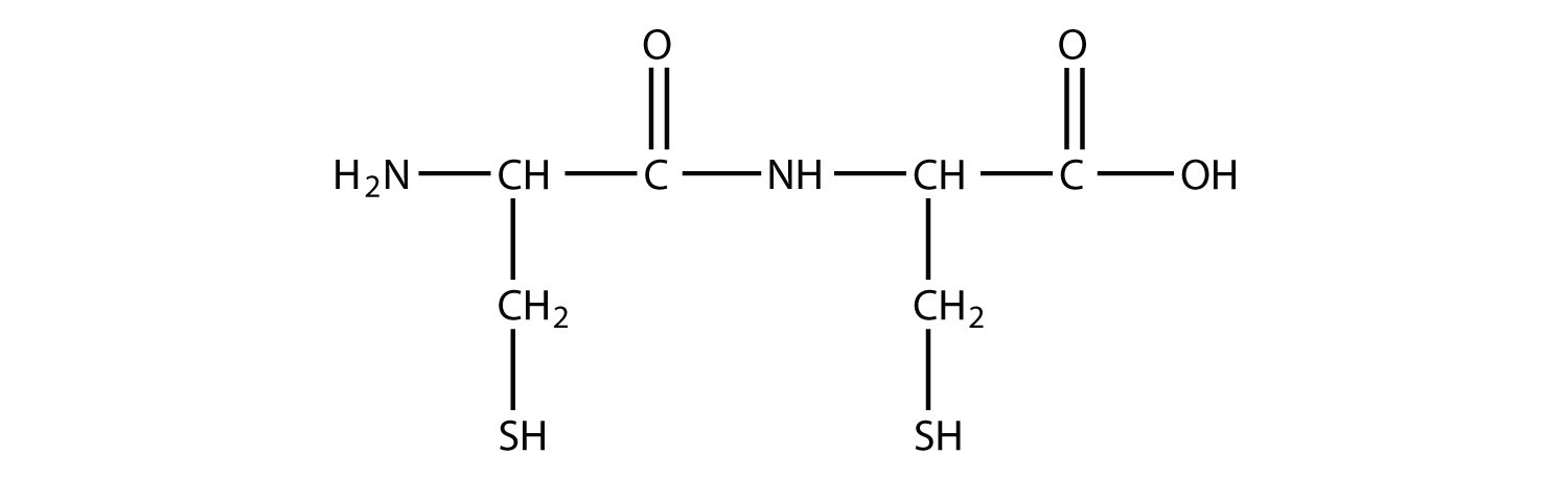This compound has one amide bond