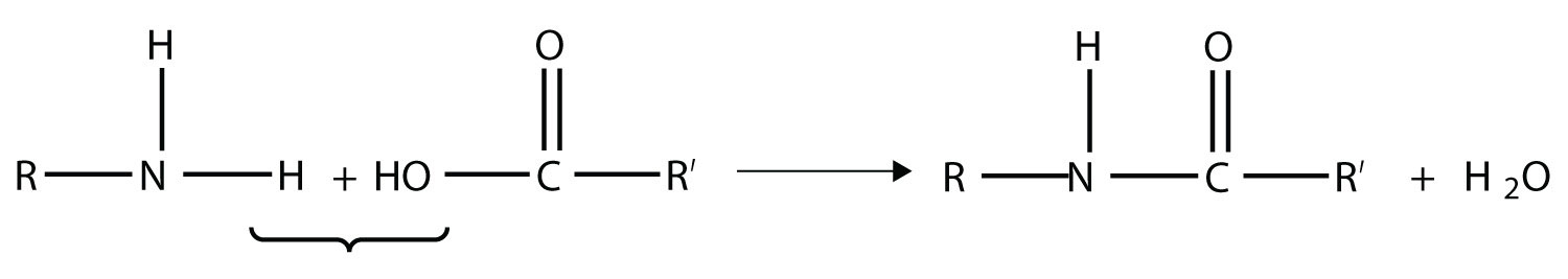The reaction between an organic acid and amine produces an amide. The Nitrogen from the amine groups bonds the Carbon from the acid initially parts of the carboxyl group. The reaction also produces water.