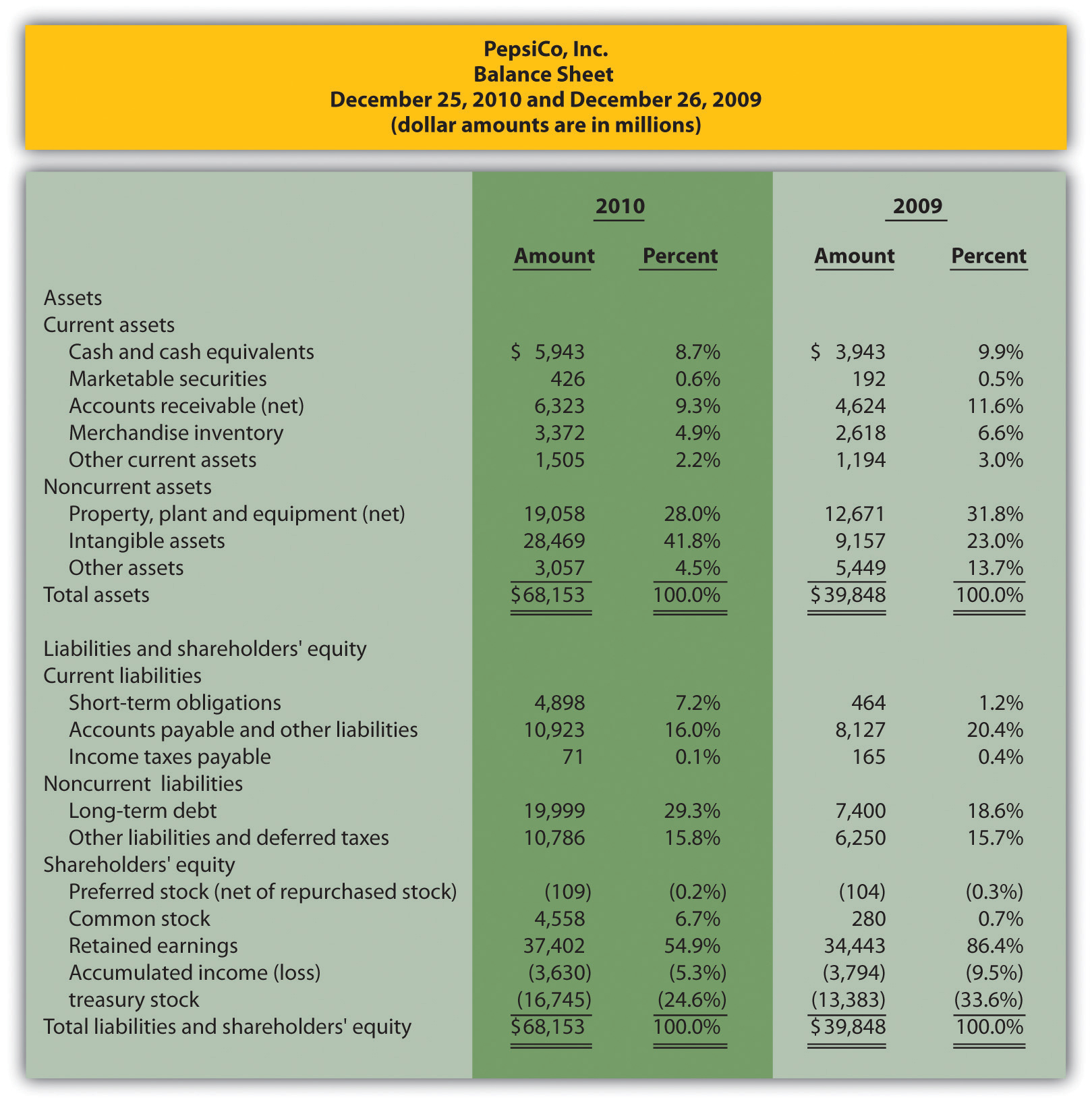 CommonSize Analysis of Financial Statements – Asset and Liability Statement Template