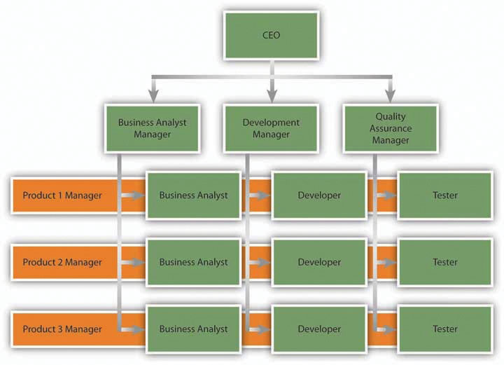 matrix structure - superior to divisional and functional structures essay Functional and divisional structures the functional structure organizes employees according to the kinds of jobs they do, groups similar jobs together into departments -- a process called departmentalization -- and then establishes different management levels to manage employees and departments.