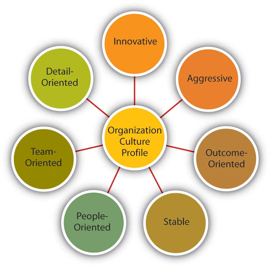 characteristics of organizational culture dimensions of culture