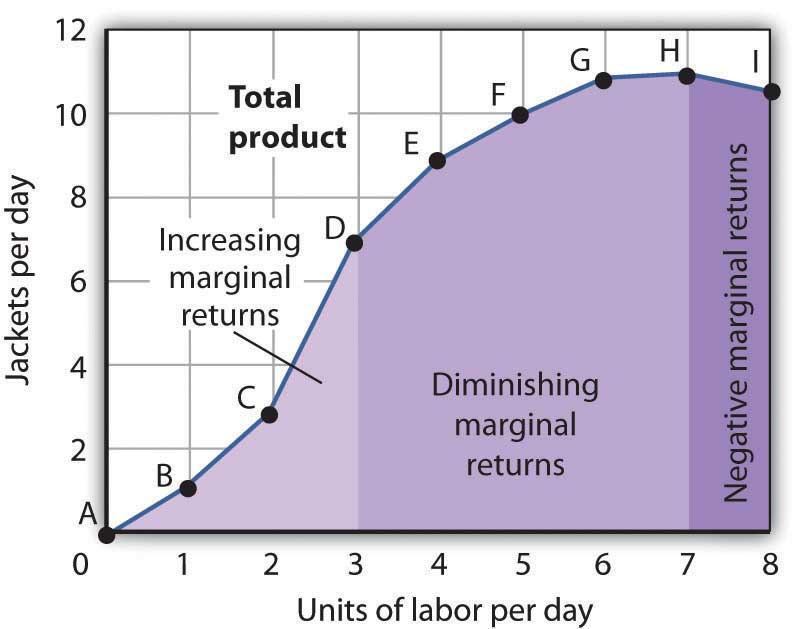 Production Choices and Costs: The Short Run