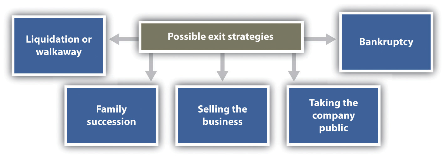 Exit strategies figure 144 possible exit strategies wajeb Images