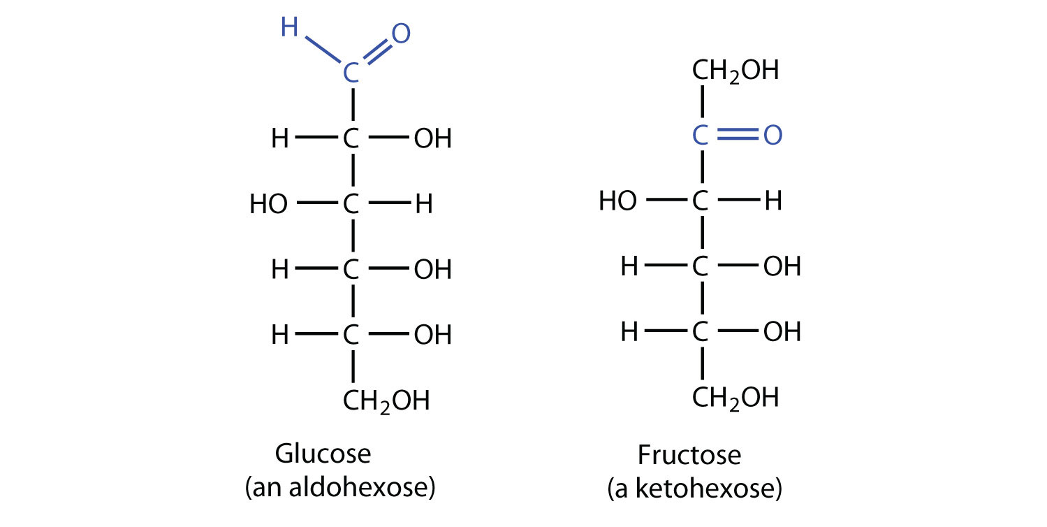 glucose and fructose differ in