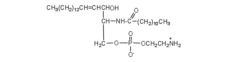 Membranes And Membrane Lipids
