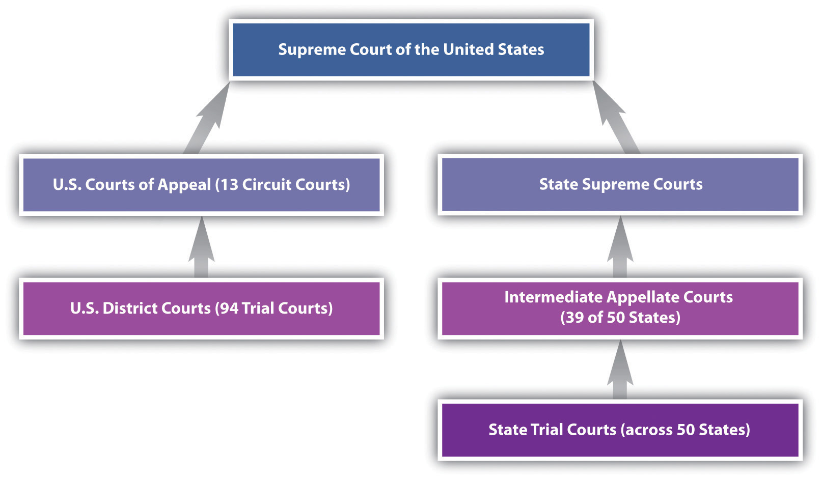 the distinguishing features and characteristics of major court systems ranging from state level supe The court's principal means of distinguishing lopez from this case is to  like state action or features of the regulated activity itself  a major portion of.